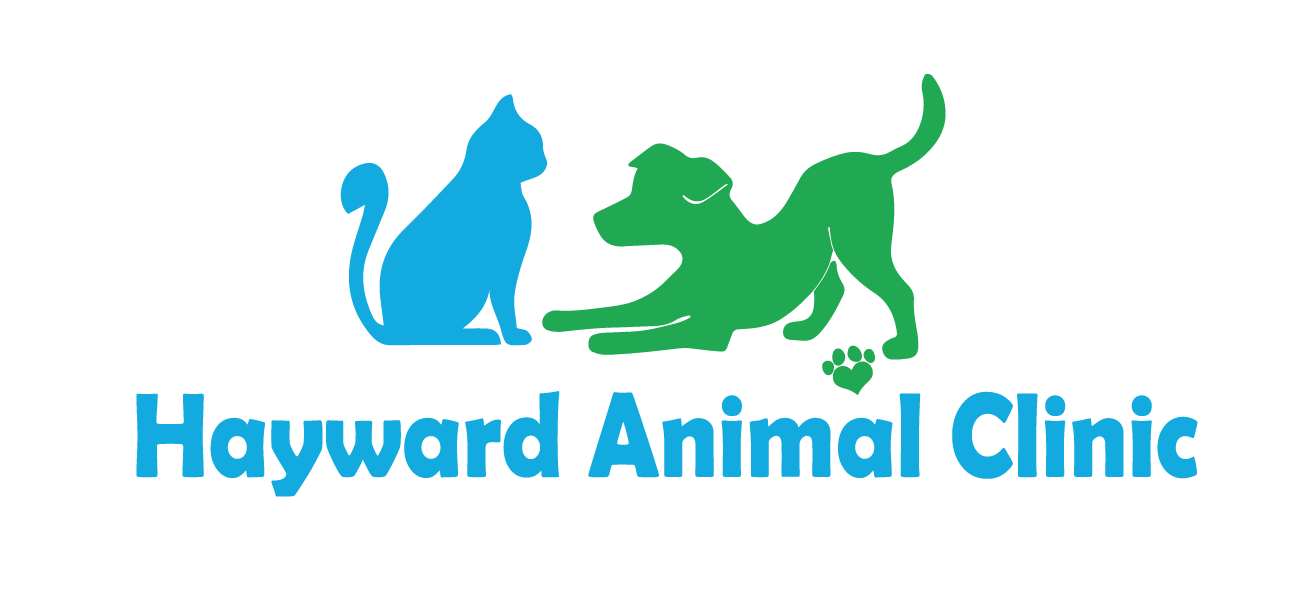 Hayward Animal Clinic